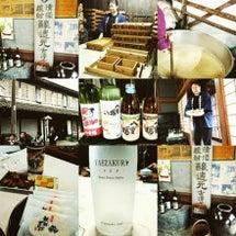 古澤醸造さん、酒蔵見…