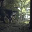 PS4:人喰いの大鷲…