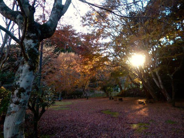 小松寺境内
