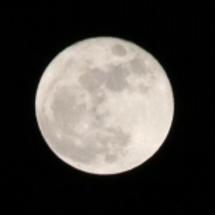 月は美しい