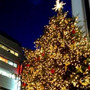 ☆今年もクリスマス♪