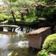 霞中庵 日本庭園池の…