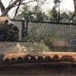 ♡ 動物園 ♡