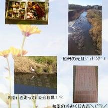 新年‼\(^^)/