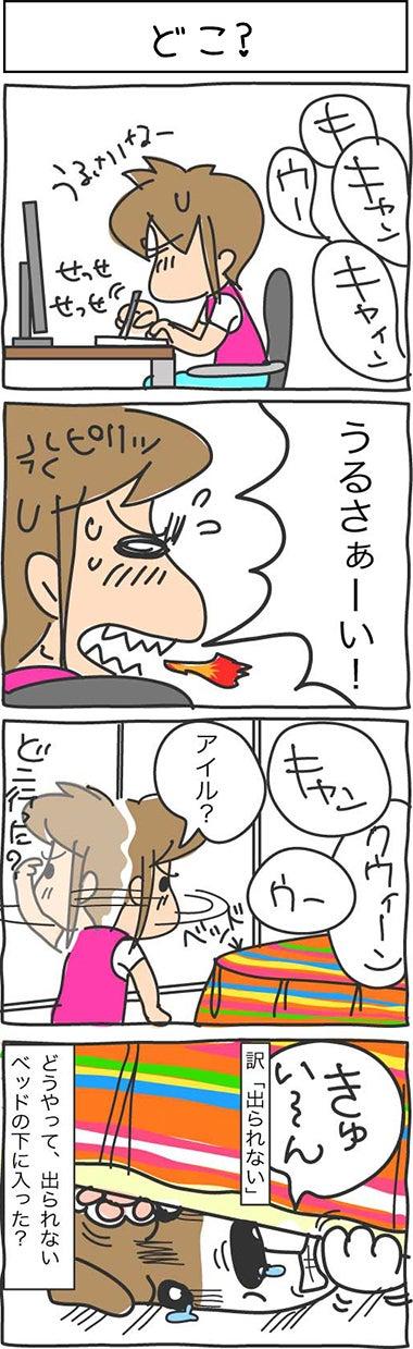 illust515