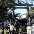 今日のかってに横浜ご…