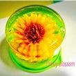 冬も向日葵の花を…(…
