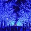 お正月 東京ツアー …