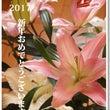 新年おめでとうござい…