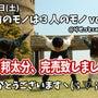 【完売】2月4日(土…