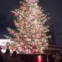 恵比寿のクリスマス♪