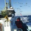 千葉県大原港力漁丸よ…