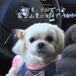 新春、箱根ドライブ♪