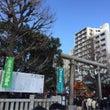 浅草神社に初詣