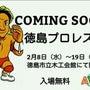 徳島プロレス展
