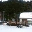 県道70号線、積雪通…