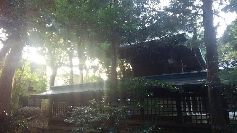 1208 中山神社 本殿裏