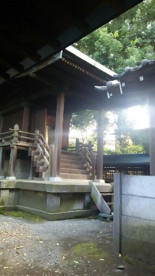 1208 中山神社 本殿 光