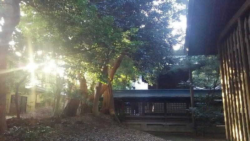 1208 中山神社 本殿裏3