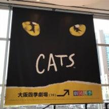 『CATS』観劇。