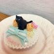 黒猫ちゃんの黒☆