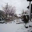 雪になりました(-_…