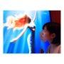 小さな人魚姫さん
