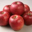抹茶とりんごのスプモ…