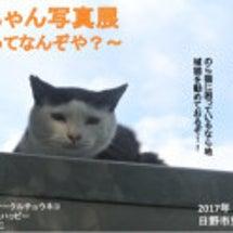 カッパちゃん写真展〜…
