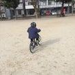 YOMEシリーズ!!…