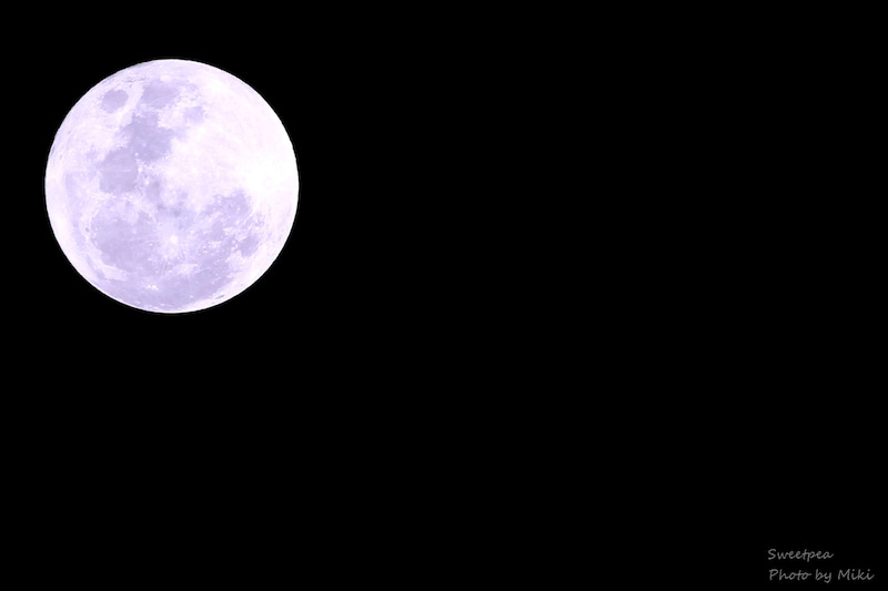 2017年 1月 満月 お月様