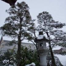 朝の雪庭 そして、夜…