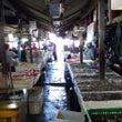 ジンバランの魚市場で…