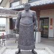 大相撲の技とウォーキ…