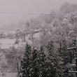 魚沼市から雪中継!