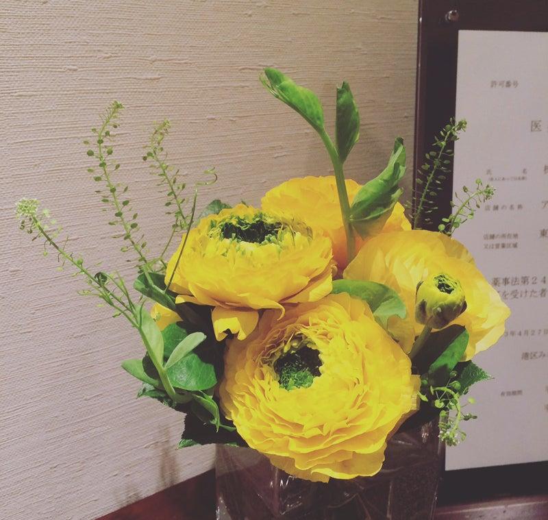 20170114_今日のお花