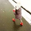 雪ん子は踊る、夜更け…