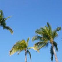 ハワイ最終日