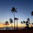 Aloha Frid…