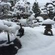 今冬最高の大雪です
