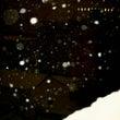 雪降る名古屋