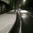 雪が降ってます!