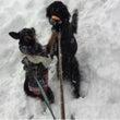はなちゃん初雪体験♪