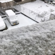 雪だよ〜。みかん染そ…