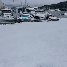 15日一面雪 雪 …