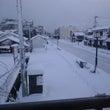 久しぶりに大雪ですわ…
