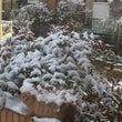 雪 その2