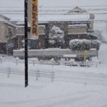 大雪ですね〜