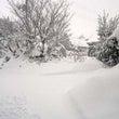 雪、雪、だす(-_-…