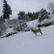 雪遊び0115